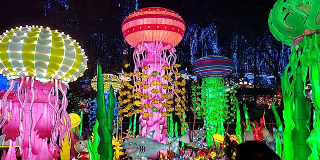 Luminosa Festival of Lights coming to Jungle Island