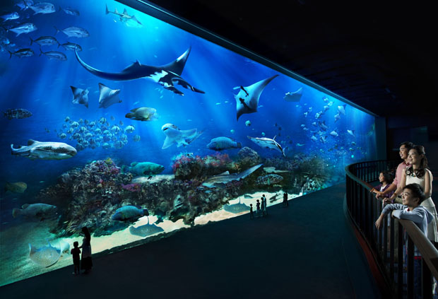 marine water and nature take centre stage at new singapore attractions park world