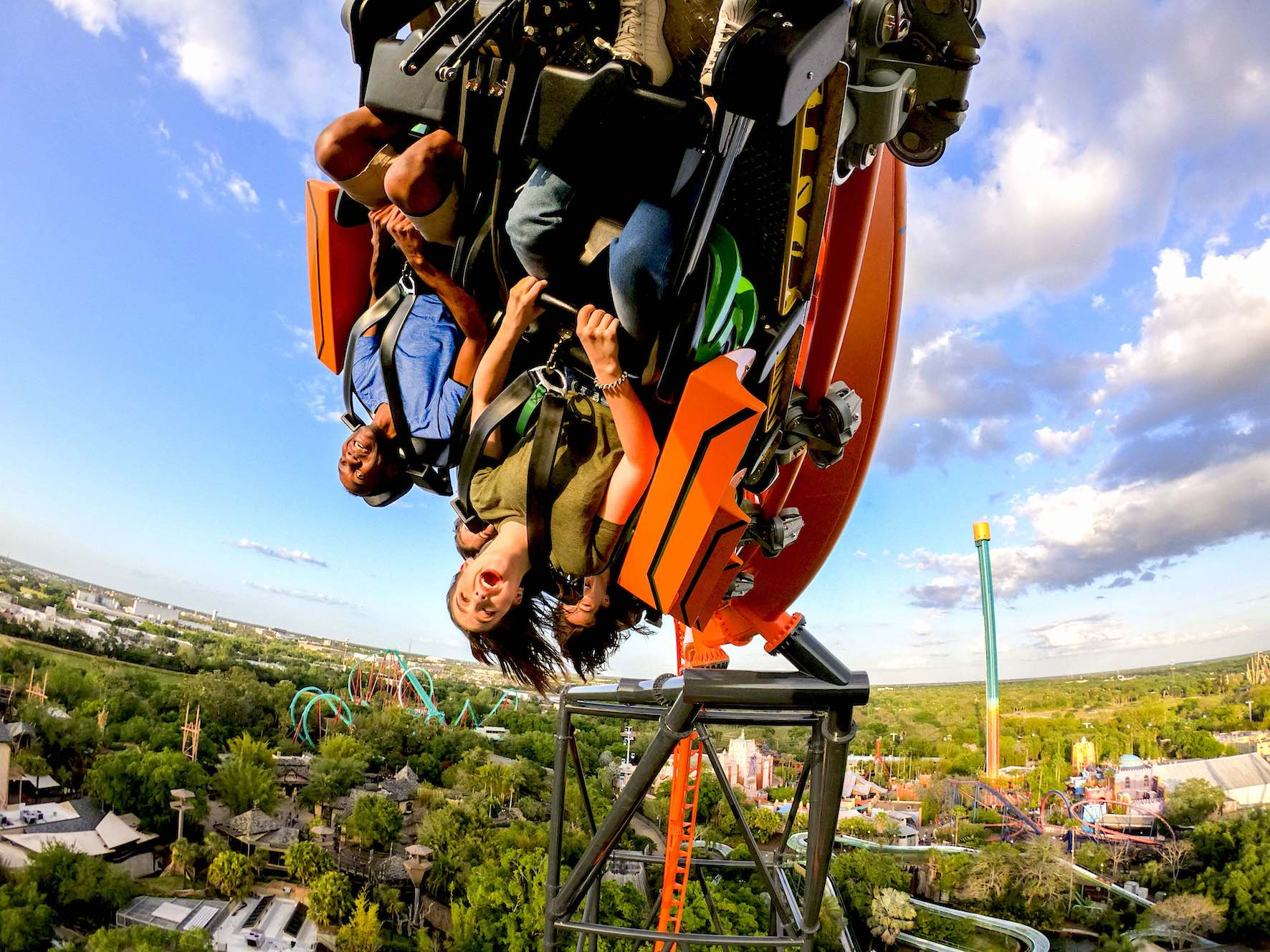 Tigris Debuts At Busch Gardens Tampa Bay Park World Online Theme Park Amusement Park And Attractions Industry News