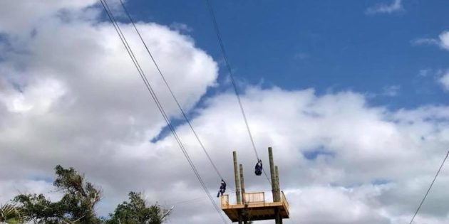Zip Line opens at Pirate's Cove